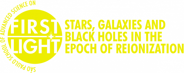 First Light: Stars, galaxies and black holes in the epoch of reionization
